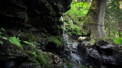 Small Water Fall and Water Dropplets Pouring From Mossy Rocks Stock Footage