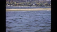 1946: dog and river MIAMI. FLORIDA Stock Footage