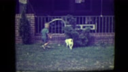 1946: a very young boy plays fetch with his little dog outside Stock Footage