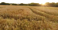 Aerial view over farmland Stock Footage