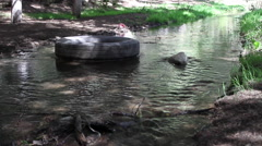 Pollution in the river water  contaminated by plastic garbage Stock Footage