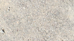 Dry soil and stones texture Stock Footage