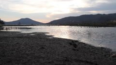Lake and mountains at sunset with ducks passing Stock Footage