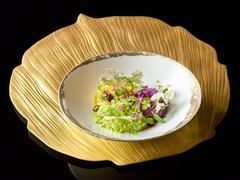 Cauliflower in symphony and vegetable caviar on art platter in black backgrou Kuvituskuvat