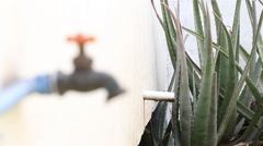 Pipe and faucet dripping water Stock Footage