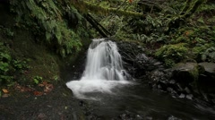 Long exposure of Shepperd's Dell Falls in OR along Columbia River Gorge 1080p Stock Footage