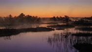 Misty bog sunrise before the sunrise timelapse Stock Footage