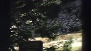 1969: a massive rock cliff on the side of a mountain as seen through pine trees Stock Footage