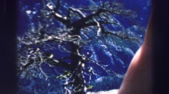1969: person with outstretched hand showing scenery from high ground YOSEMITE, Stock Footage