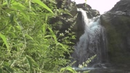 Waterfall Scene from Front Beautiful Nature Footage Stock Footage