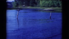 1951: river rising against giving life and math nature balanced in will CANADA Stock Footage