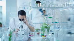 4K Portrait smiling research scientist working in laboratory Stock Footage