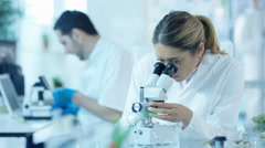 4K Scientific researchers in laboratory, woman analyzing sample under microscope Stock Footage