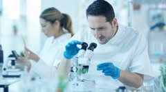 4K Scientific researchers in laboratory, man analyzing sample under microscope Stock Footage