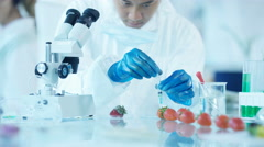 4K Food science researchers working in lab, man injecting chemicals into fruit Stock Footage