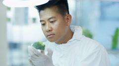 4K Food science researcher working in lab injecting chemicals into broccoli Stock Footage