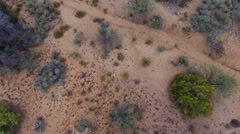 Aerial view of desert boulders and rock formations Stock Footage