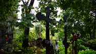 Crosses in the cemetery Stock Footage