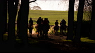 String of Rach Horse Silhouetted on cold winters morning. Stock Footage