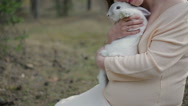 Girl and white rabbit Stock Footage