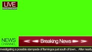Red News Screen Stock Footage