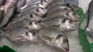 Fish in the market La Boqueria in Barcelona Stock Footage