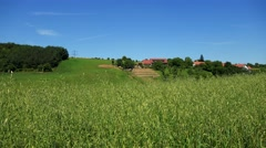 Nature - meadow with grass and building in background on the hill  Stock Footage