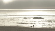 Woman Walking Oregon Coast With Her Dog Stock Footage