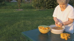 Elderly woman 90s cleans chanterelle mushrooms Stock Footage