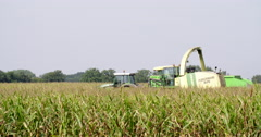 Europe agriculture harvesting corn Stock Footage