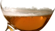 Beer being poured into Glass against White Background, Slow motion Stock Footage