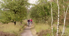 Active seniors cycling in nature Europe Stock Footage