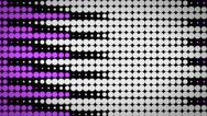 CI000054 Purple Circle Background Stock Footage