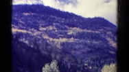 1967: mountain in the distance and trees in foreground COLORADO Stock Footage