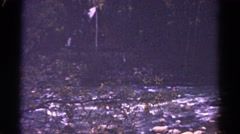 1967: bare and fallen branch lies across shallow stream littered with stones Stock Footage