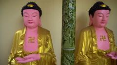 Panorama of Buddha statue gallery Stock Footage
