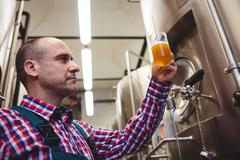 Low angle view of manufacturer examining beer in mug at brewery Kuvituskuvat