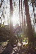 Mountain biker riding amidst tree in forest on sunny day Stock Photos