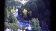 1967: forest area is seen COLORADO Stock Footage
