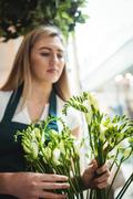 Female florist arranging flower in the flower shop Stock Photos