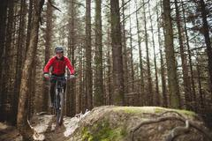 Mountain biker riding on dirt road amidst trees in woodland Stock Photos
