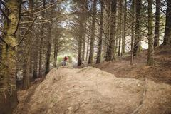 Distance view of mountain biker riding on dirt road amidst trees in forest Stock Photos