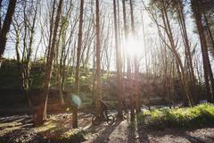 Mountain biker riding amidst trees in woodland Stock Photos