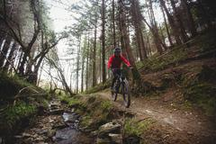Front view of mountain biker riding on trail by stream in forest Stock Photos