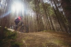 Low angle view of mountain biker riding on dirt road by tree in forest Stock Photos