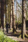 Mountain biker riding on pathway in forest Stock Photos