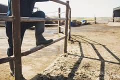 Low section of farm worker standing by fence at field Stock Photos