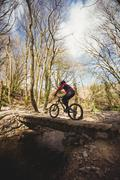 Rear view of mountain biker on footbridge over stream in forest Stock Photos
