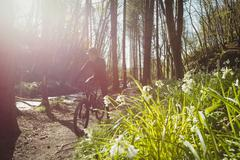 Mountain biker riding on pathway by stream in forest Stock Photos