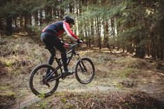 Male mountain biker riding on dirt road in woodland Stock Photos